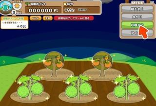 げん玉フルーツ農場2.jpg
