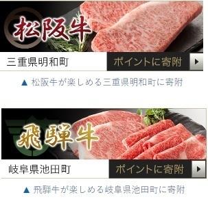 ふるさと納税 ふるなび ちょびリッチ.jpg