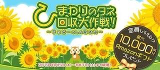 モッピー ひまわりの種 キャンペーン.jpg